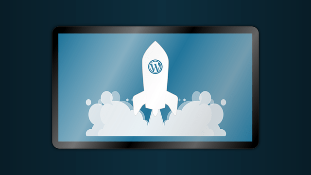 wordpress logo and rocket